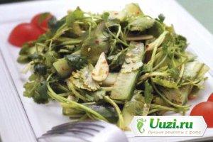Салат из огурцов и кинзы Изображение