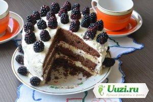 Шоколадный торт с взбитыми сливками Изображение