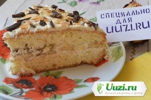 Бисквитный торт с масляным кремом Изображение