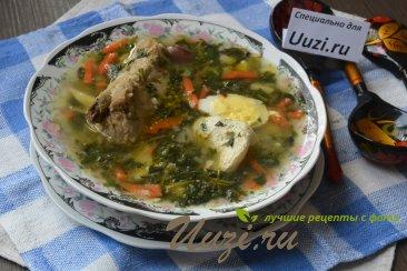 Суп из крапивы с мясом Изображение