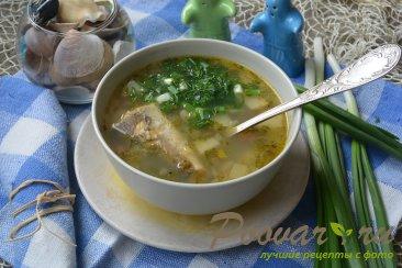 Суп из рыбы с пшеном Изображение