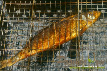 Рыба на решётке Шаг 6 (картинка)
