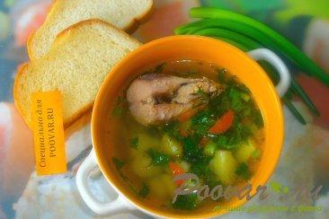 Суп с рыбными консервами и зеленью Изображение