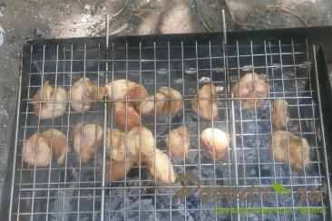 Гузки куриные на решётке-гриль Шаг 5 (картинка)