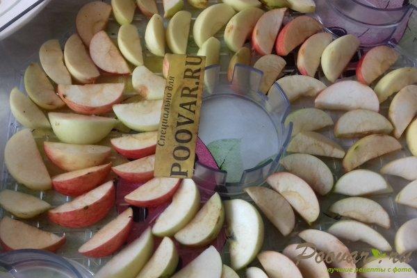 Сушка яблок в электросушке Шаг 4 (картинка)