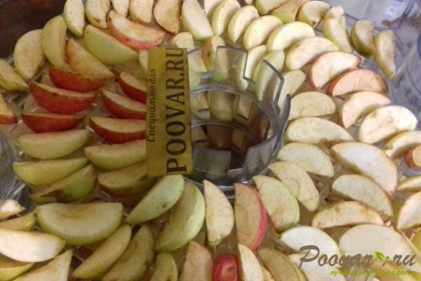 Сушка яблок в электросушке Шаг 7 (картинка)